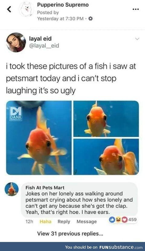 Fish fight back