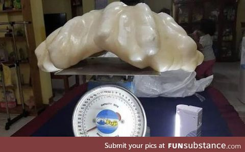 A fisherman finds a 34 Kg pearl valued over $100 million