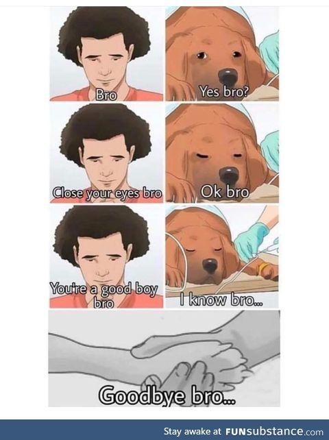 Goodbye bro