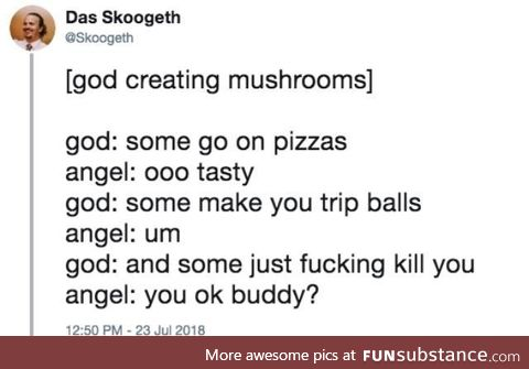 And then God made mushrooms