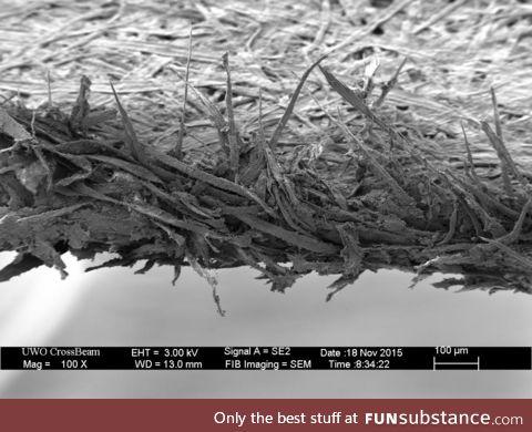Edge of Paper in Microscope