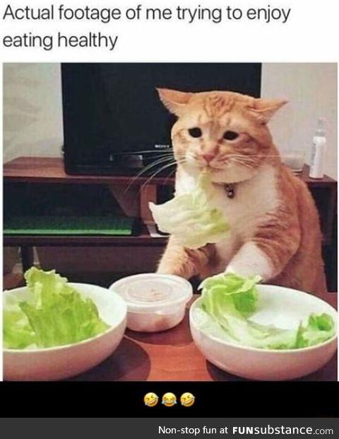 Vege is healthy