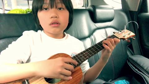Kid murders The Cramberries on ukulele
