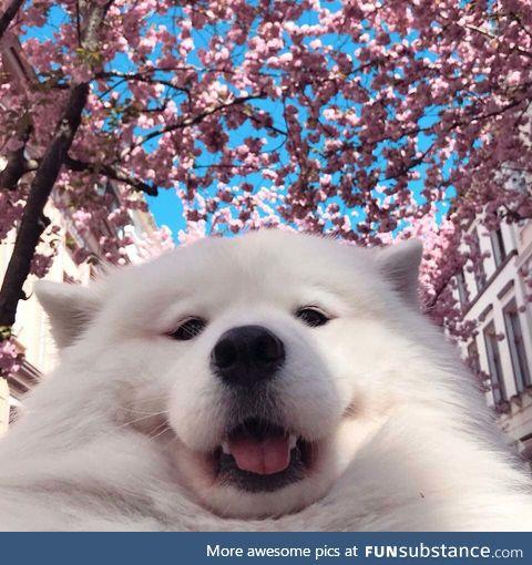 selfie time ;3