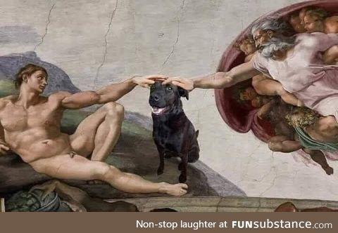 And God said onto Man: Pet the Darn Dog