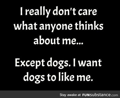 I want dogs to like me