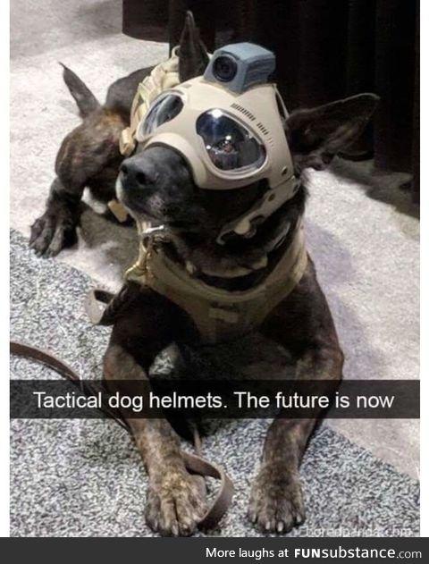 Battle boy