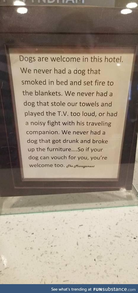 Proof dogs are too good for us