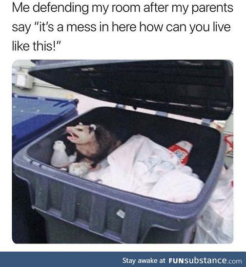 It's my mess