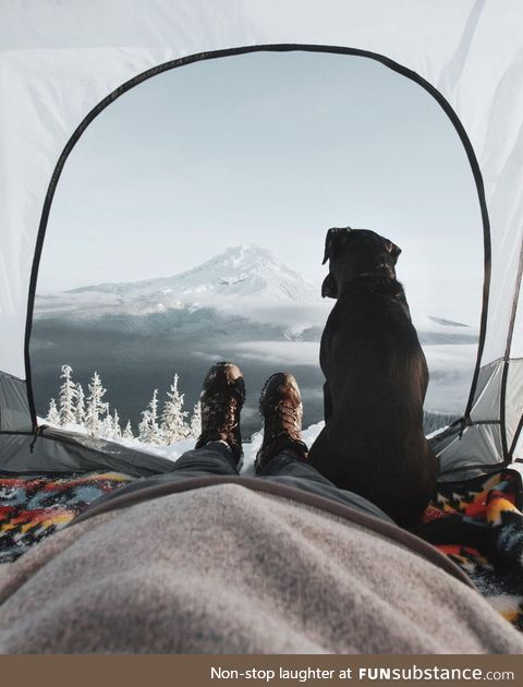 Lovely view from the tent