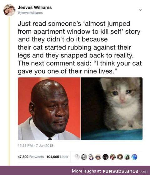 Cat saving lives