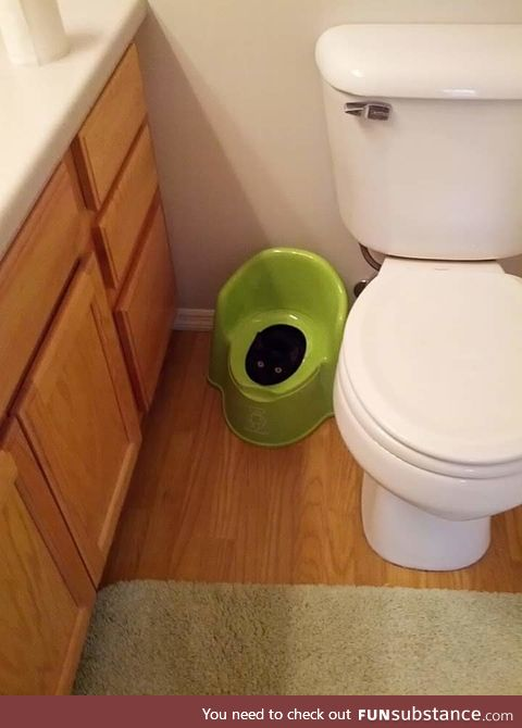 This probably won't help with potty training