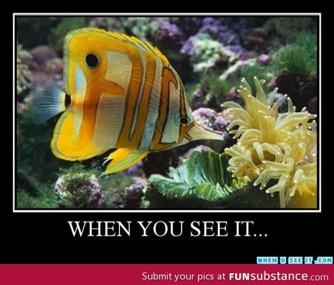 When u see it