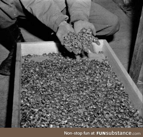 Some of the wedding rings found in Auschwitz
