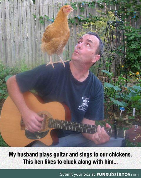 Chicken pickin'