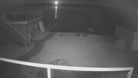 Meteor caught on the security cam at a cottage