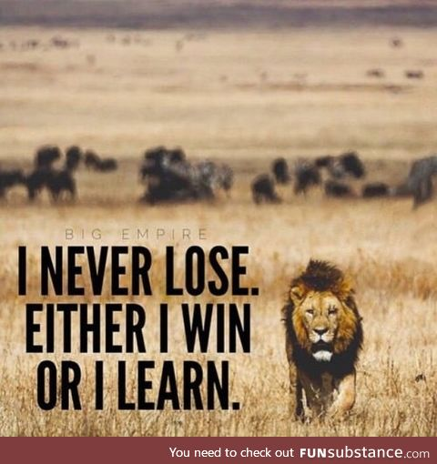 I never lose