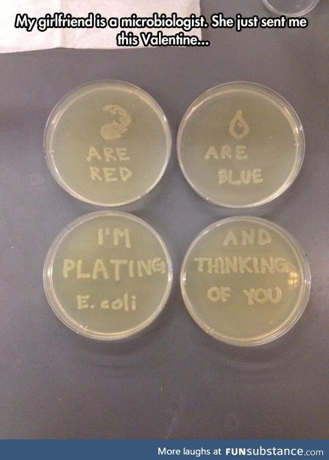 Microbiologist expressing her love