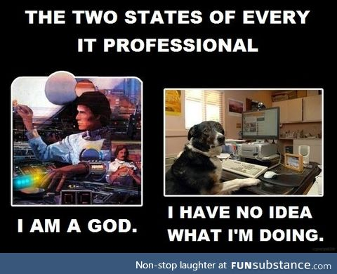 The two states of an IT professional
