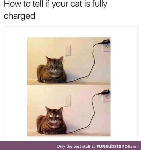Cat is fully charged.. Please remove plug