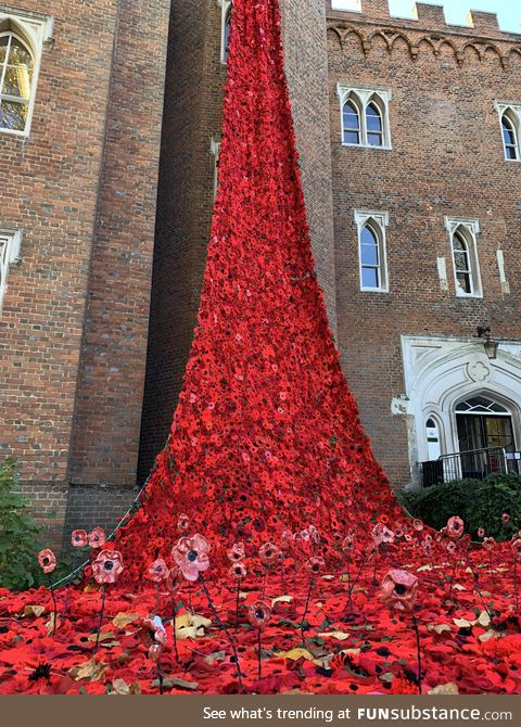 In memory of those who lost their lives in WW1