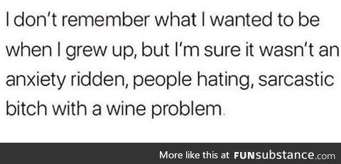 I don't have a wine problem just yet