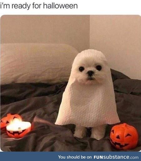 Pup or treat