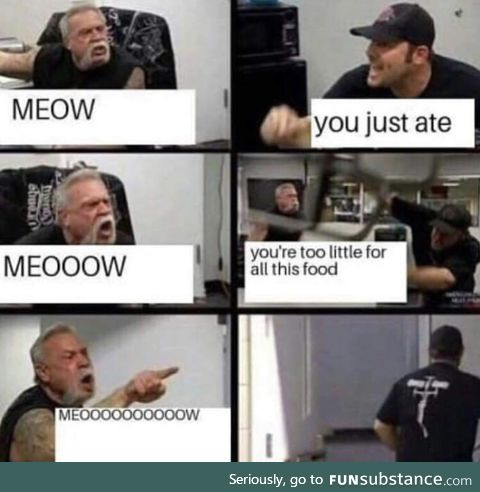This is how my cat is