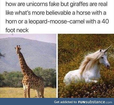 I actually don't believe in giraffes