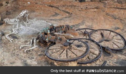 Near complete remains of an Iron Age horse drawn chariot found in England