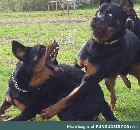 When you try to hug her, but she's still mad at you