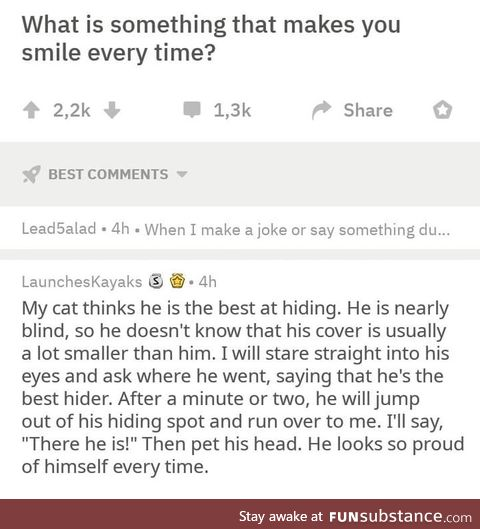 Wholesome cat owner