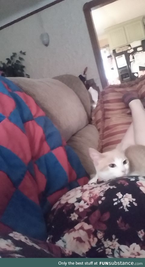 Best place to lay down