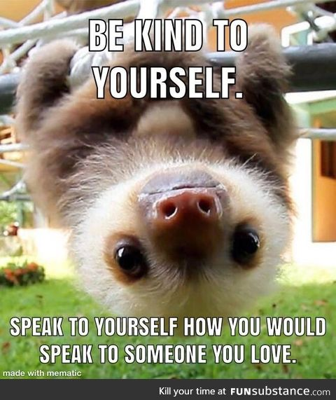 Wise words from a baby sloth