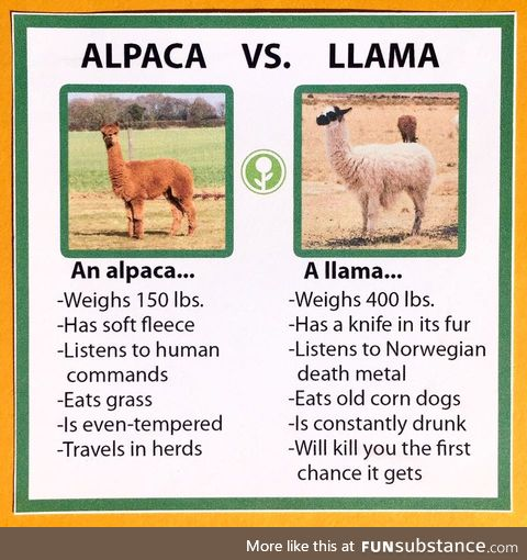 I googled the differences between llamas and alpacas... found this.