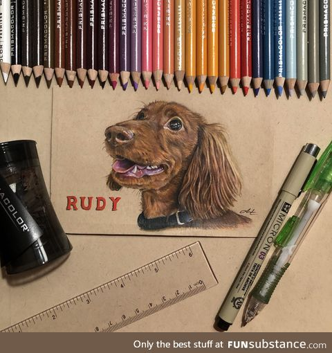 4 days + 30 colored pencils = 1 finished portrait of a very good boy
