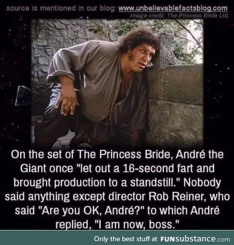 Only Andre