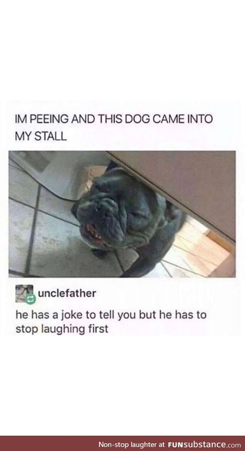 Let the dog laugh oute first