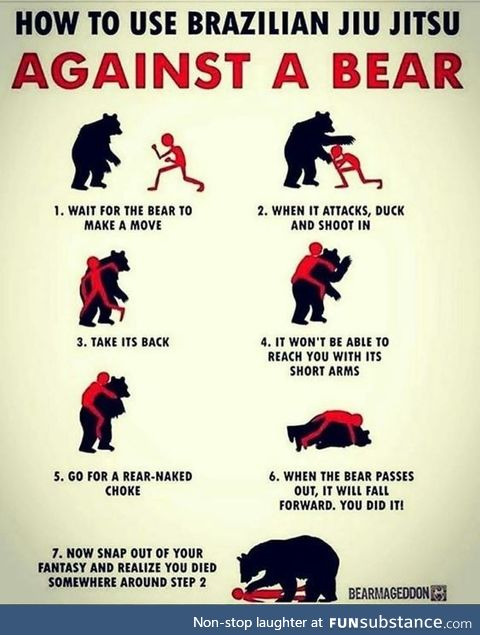 How to use BJJ against a bear