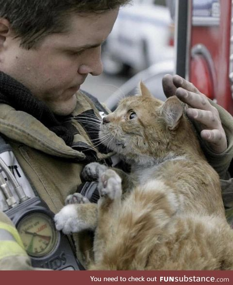 Cat with the Fireman that saved him