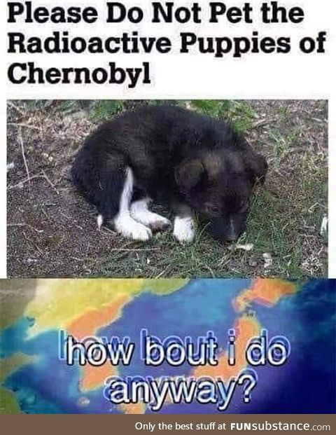 When I see doggo, I pet doggo