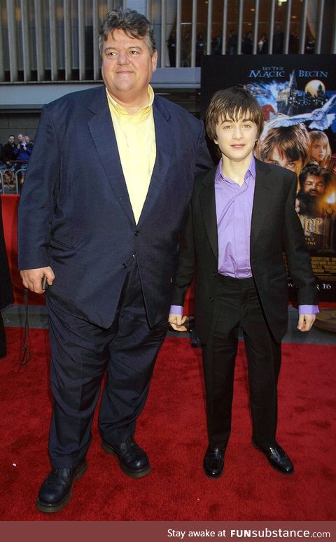 This is a cursed image of beardless Hagrid and crackhead Harry
