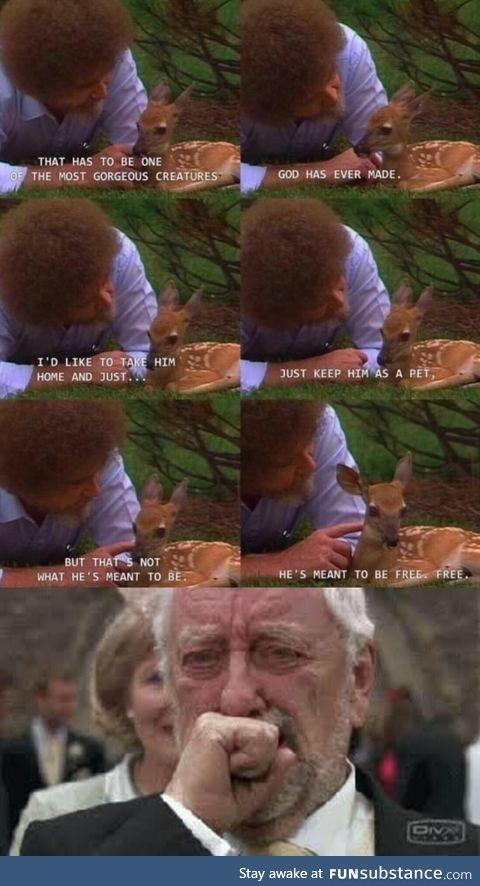 The Bob we needed