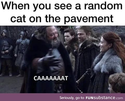 Caaaaaaaat