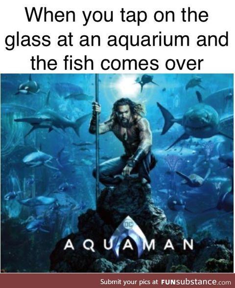 Aww yeah fishman powers