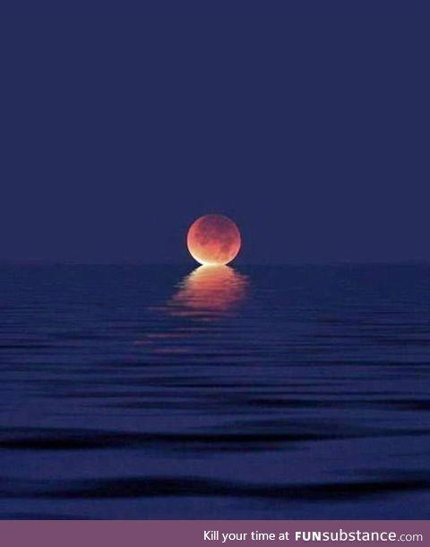 When the moon kisses the ocean