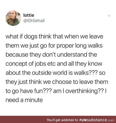 A Dogs worry