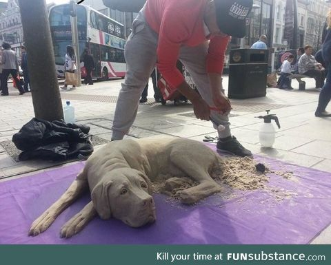 This dog made out of sand