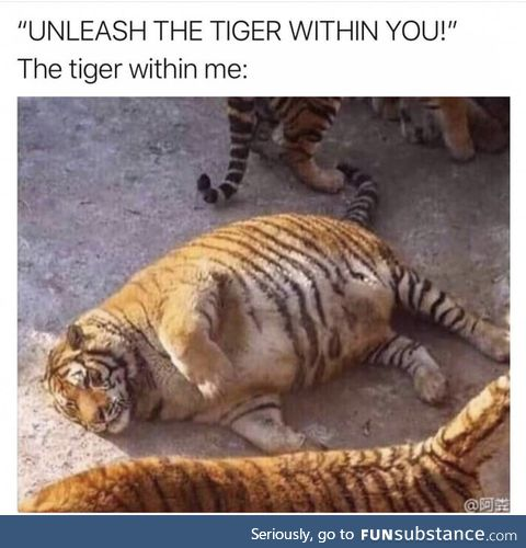 Unleash the tiger within you!!