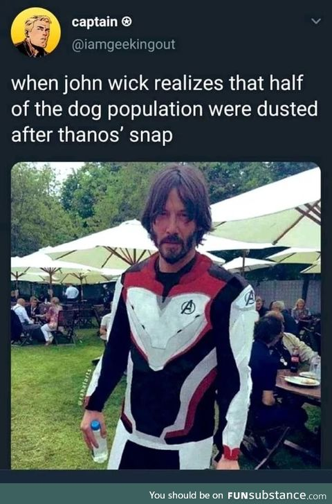 When he realized that thanos snapped half of the dogs population